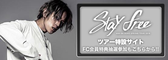 Stayfree-small-bnr